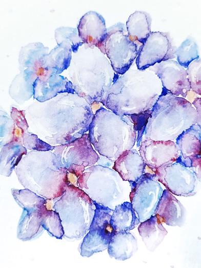 lisa_kreativ_hortensie_watercolor_aquarell_floral_live_video_lettering_Lernen_Workshop